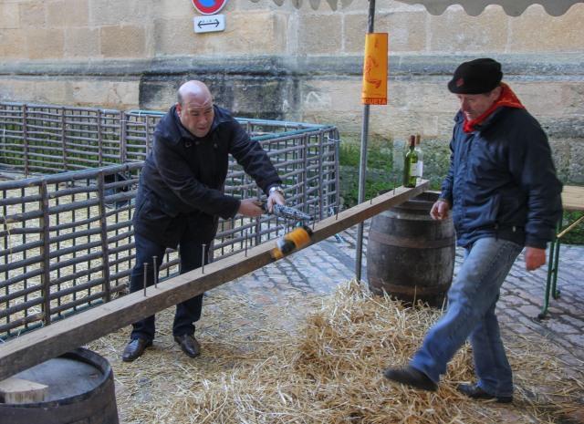 Dordogne - Sarlat - Goose Festival