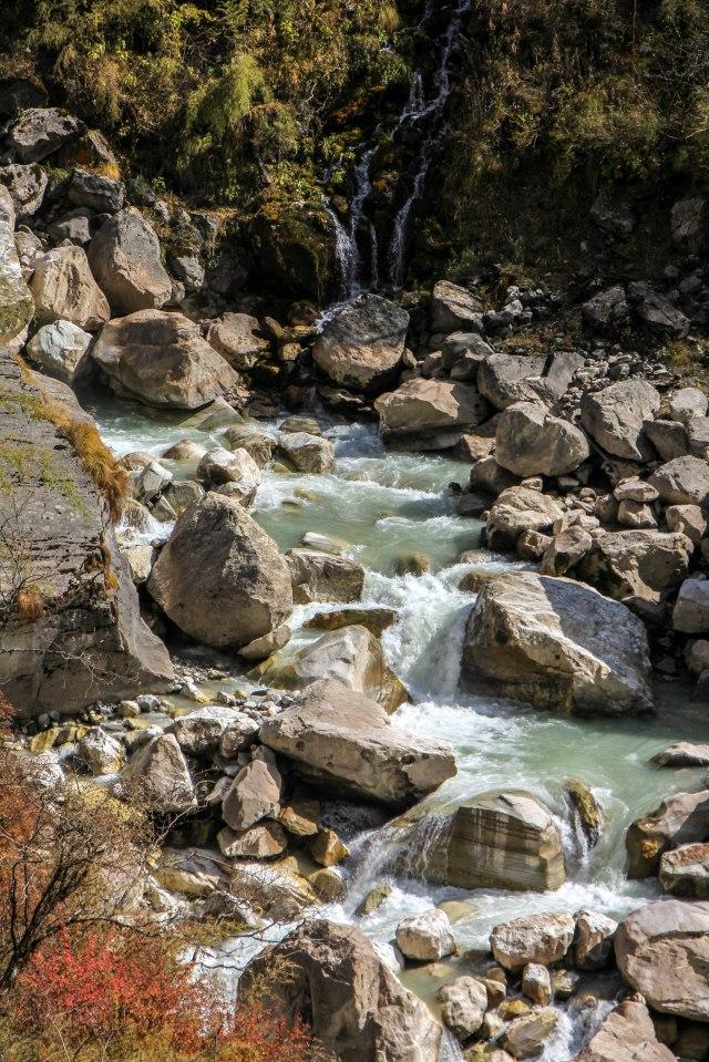 Trekking Annapurna ABC - Bamboo to Deurali (15)