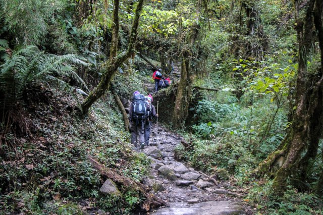 Trekking Annapurna ABC - Bamboo to Deurali