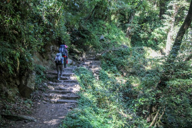 Trekking Annapurna ABC - Chomrong to Bamboo (12)