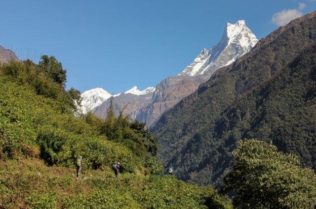 Trekking Annapurna ABC - Chomrong to Bamboo (13)