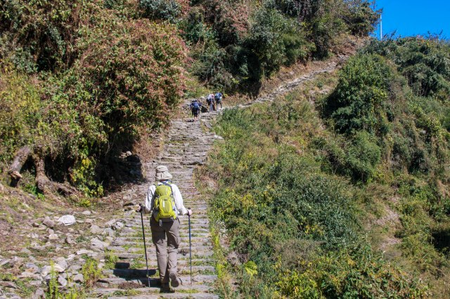 Trekking Annapurna ABC - Chuile to Chomrong (11)