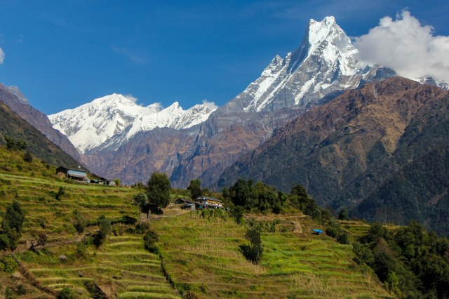 Trekking Annapurna ABC - Chuile to Chomrong (12)