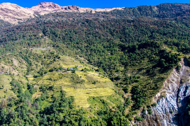 Trekking Annapurna ABC - Chuile to Chomrong (2)
