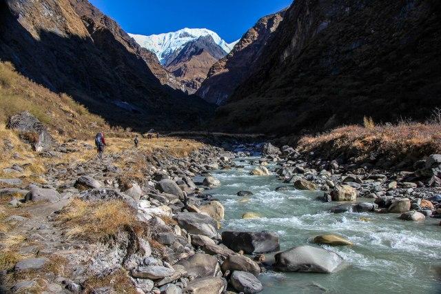 Trekking Annapurna ABC - Deurali to ABC (8)