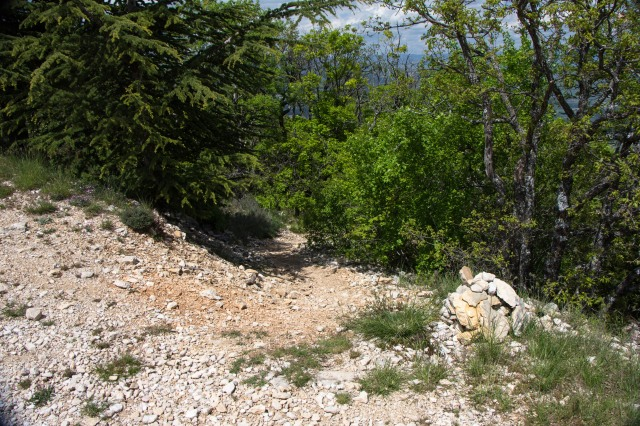 cairn marking the trail at #4