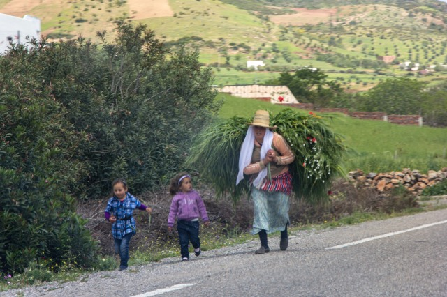 Drive to Oued-Laou