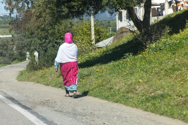 regional traditional dress