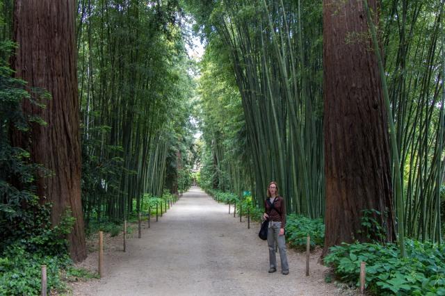 Bambouseraie de Prafrance-1