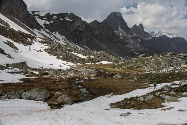 Alps_Mary Pass-1-12