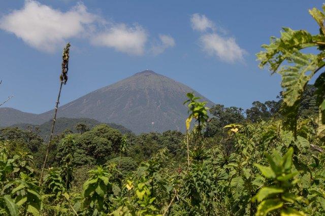 Mt Bisoke-1-7
