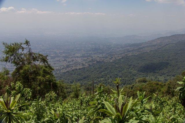 Mt Bisoke-1-9
