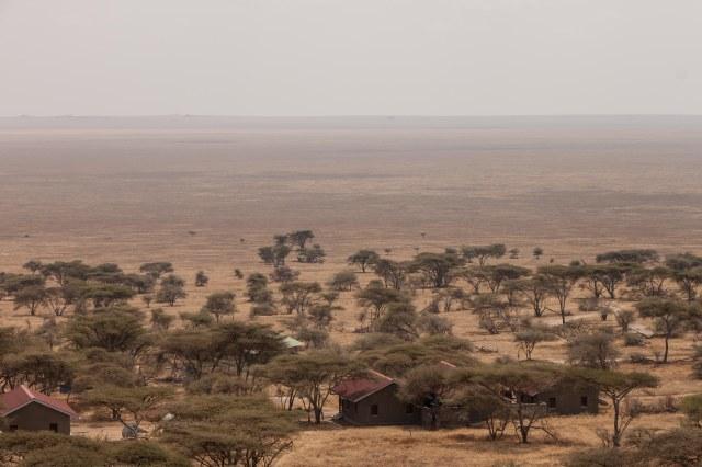 Central Serengeti - Naabi Hill Gate