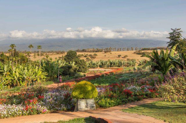 Ngorongoro Farm House -