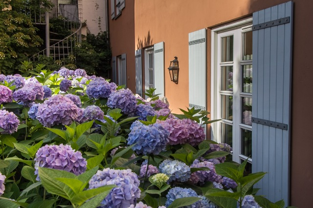 Aarhus - Villa Provence