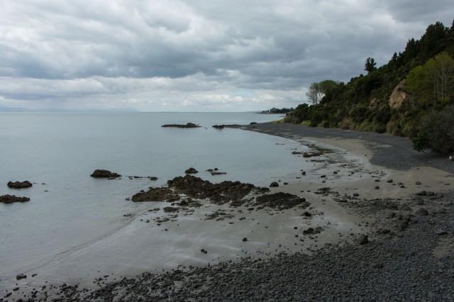 Coromandel Peninsula - Firth of Thames
