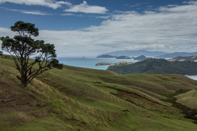Coromandel Peninsula - West side