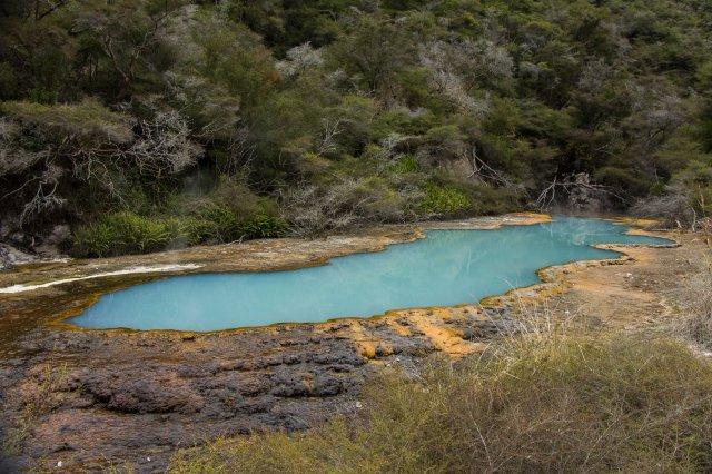 Rotorua - Waimangu Volcanic Valley