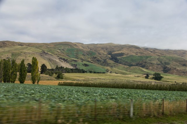Drive from Dunedin to Cromwell via route 8