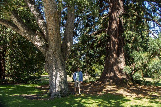 Christchurch - Botanical Garden