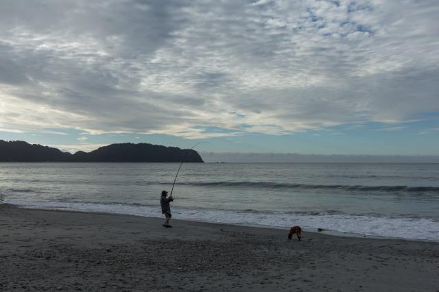 West Coast - Jackson Bay