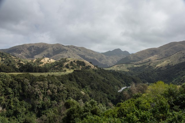 outside of Christchurch