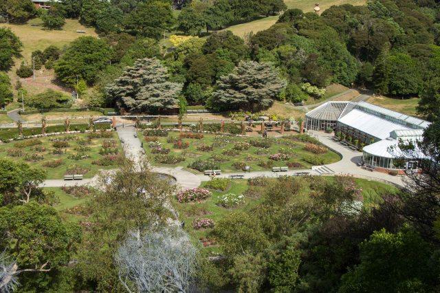 Wellington - Botanic Garden