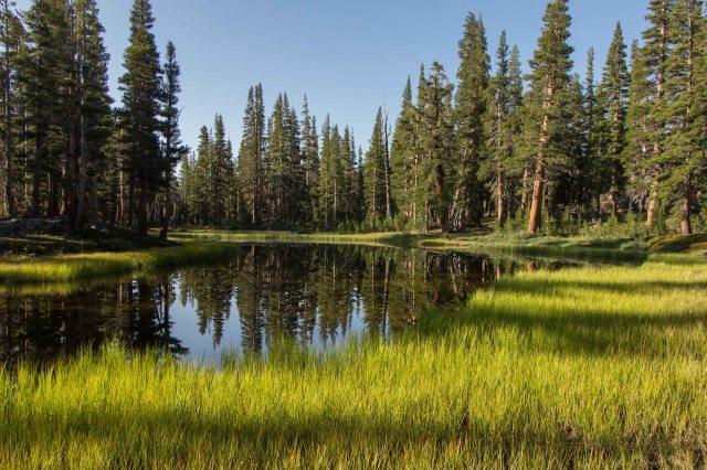 Trinity Lakes, Ansel Adams Wilderness