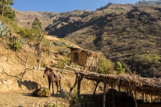 Choquequirao - Upper Chiquisca km marker 16 - Sana Wasi(?)
