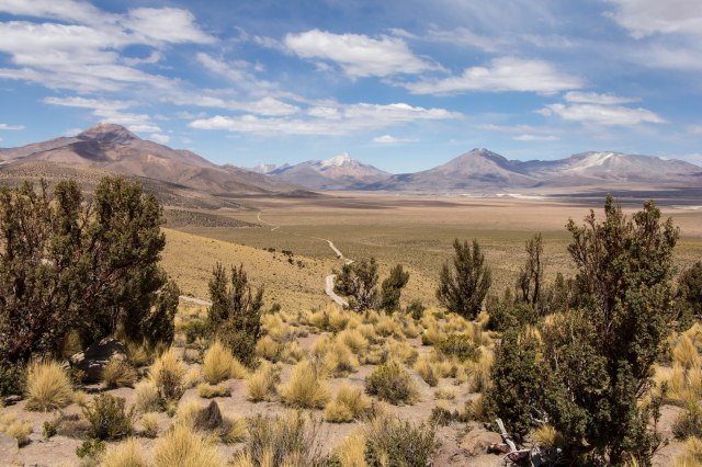 National Park Vulcano Isluga