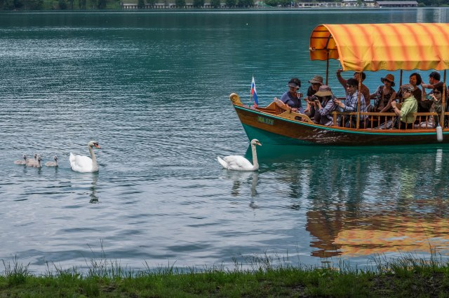 Day trip to Lake Bled-16