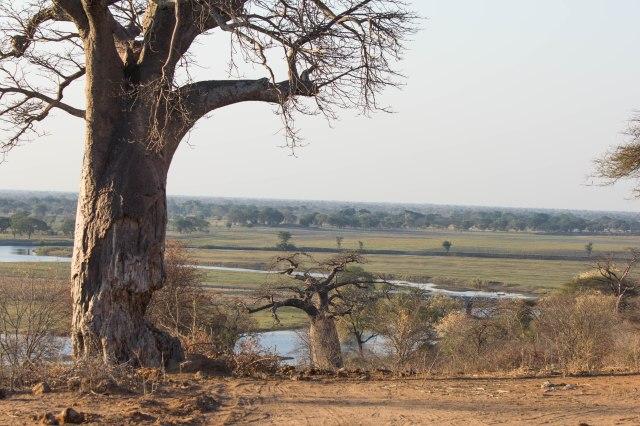 Arrival in Chobe-4