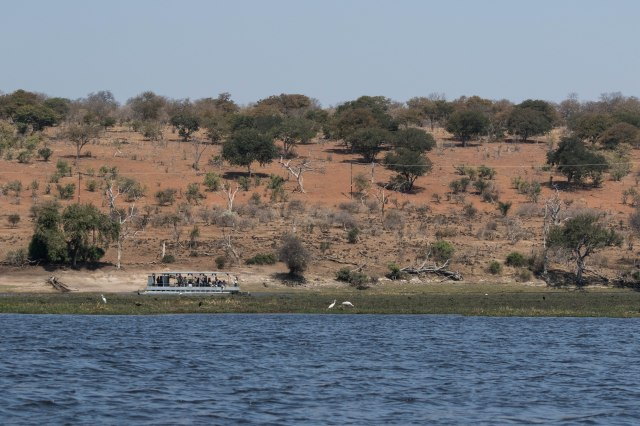 Chobe Boat Tour-25