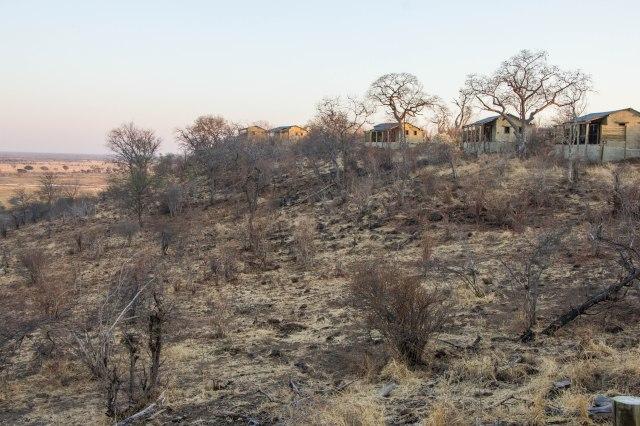 Chobe Elephant Camp-8