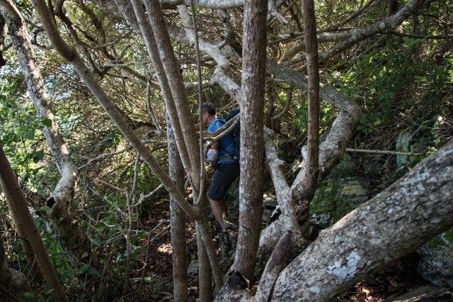 Otter Trail Day 1-16