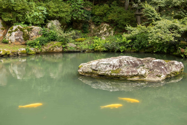 Southern Higashiyama Walking Tour