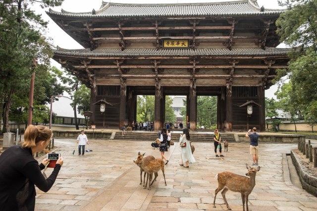 Todai-ji - main gate
