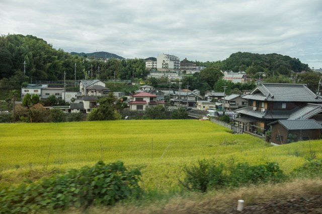 Train to Koyasan