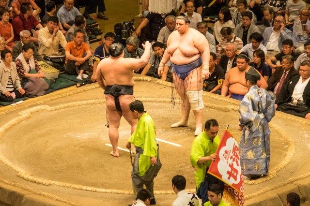 Sumo - Bulgarian wrestler - Aoiyama