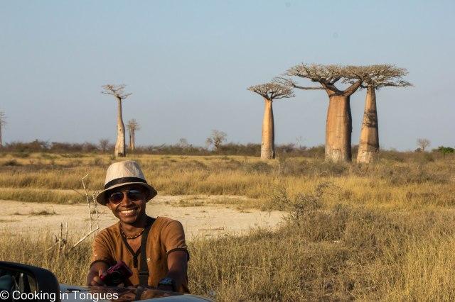 Near Avenue of Baobabs