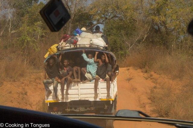 Drive from Tsingy de Bemaraha to Kirindy Forest-1-3.jpg