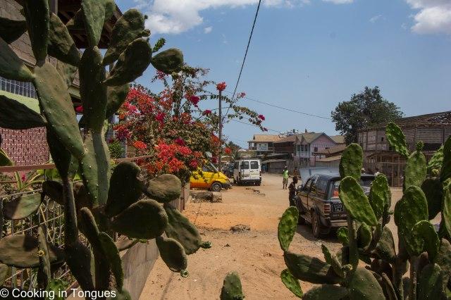 Belo Tsiribihina