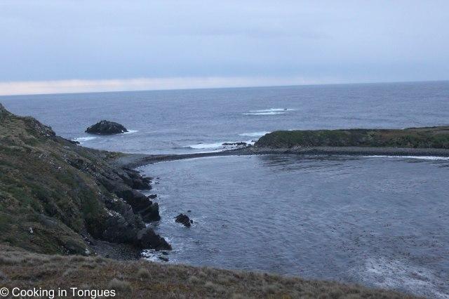 Cruise Punta Arenas to Ushuaia