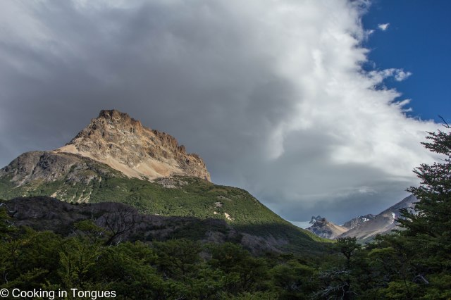 Los Huemules Reserve