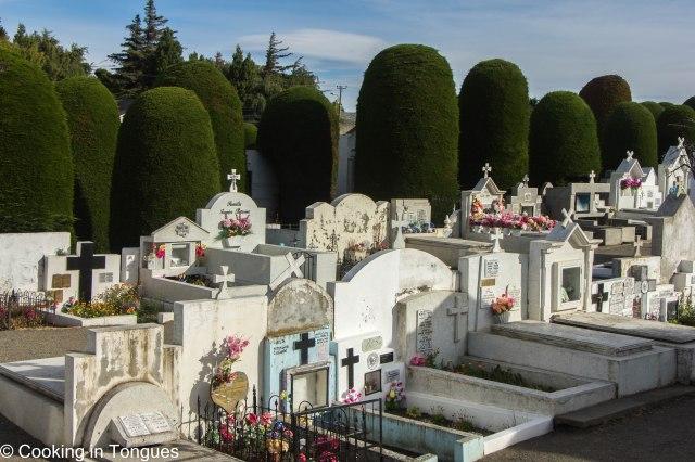 Punta Arenas (12 of 17)