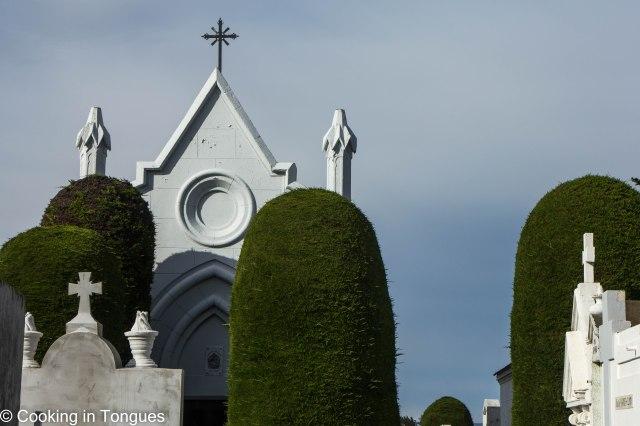 Punta Arenas (14 of 17)
