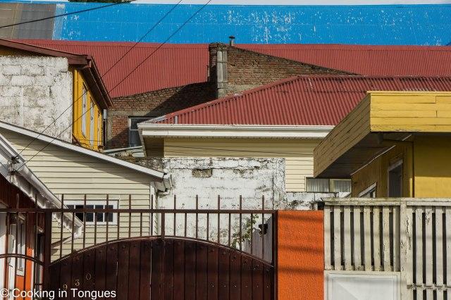 Punta Arenas (17 of 17)