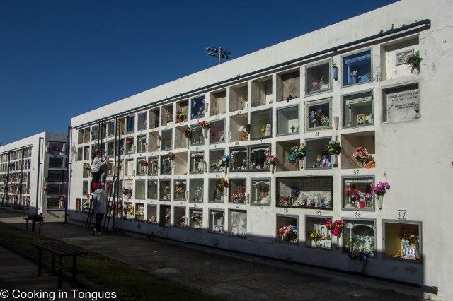 Punta Arenas (4 of 17)