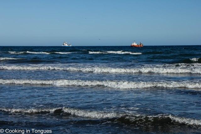 Punta Arenas (7 of 17)