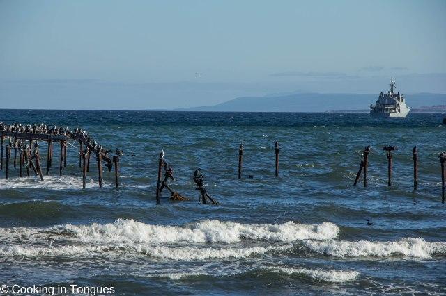 Punta Arenas (9 of 17)